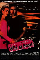 Wild at Heart Quotes