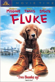 Movie Fluke