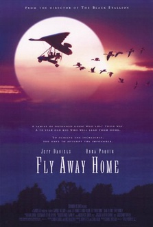 Movie Fly Away Home