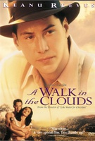 A Walk in the Clouds Quotes