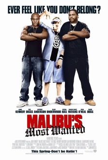 Movie Malibu's Most Wanted