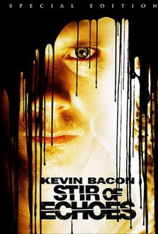 Movie Stir of Echoes