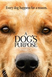 A Dog's Purpose Quotes