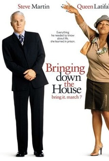 Movie Bringing Down the House