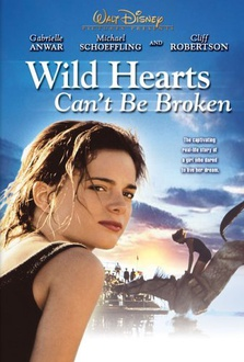 Movie Wild Hearts Can't Be Broken