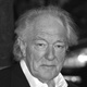 Sir Michael Gambon Quotes